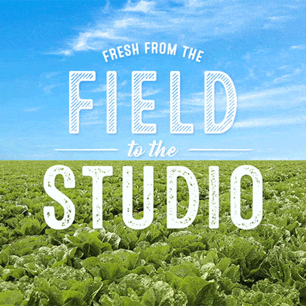 Fresh from the Field to the Studio