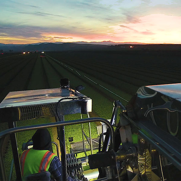 A harvester on a field being put to use late at night